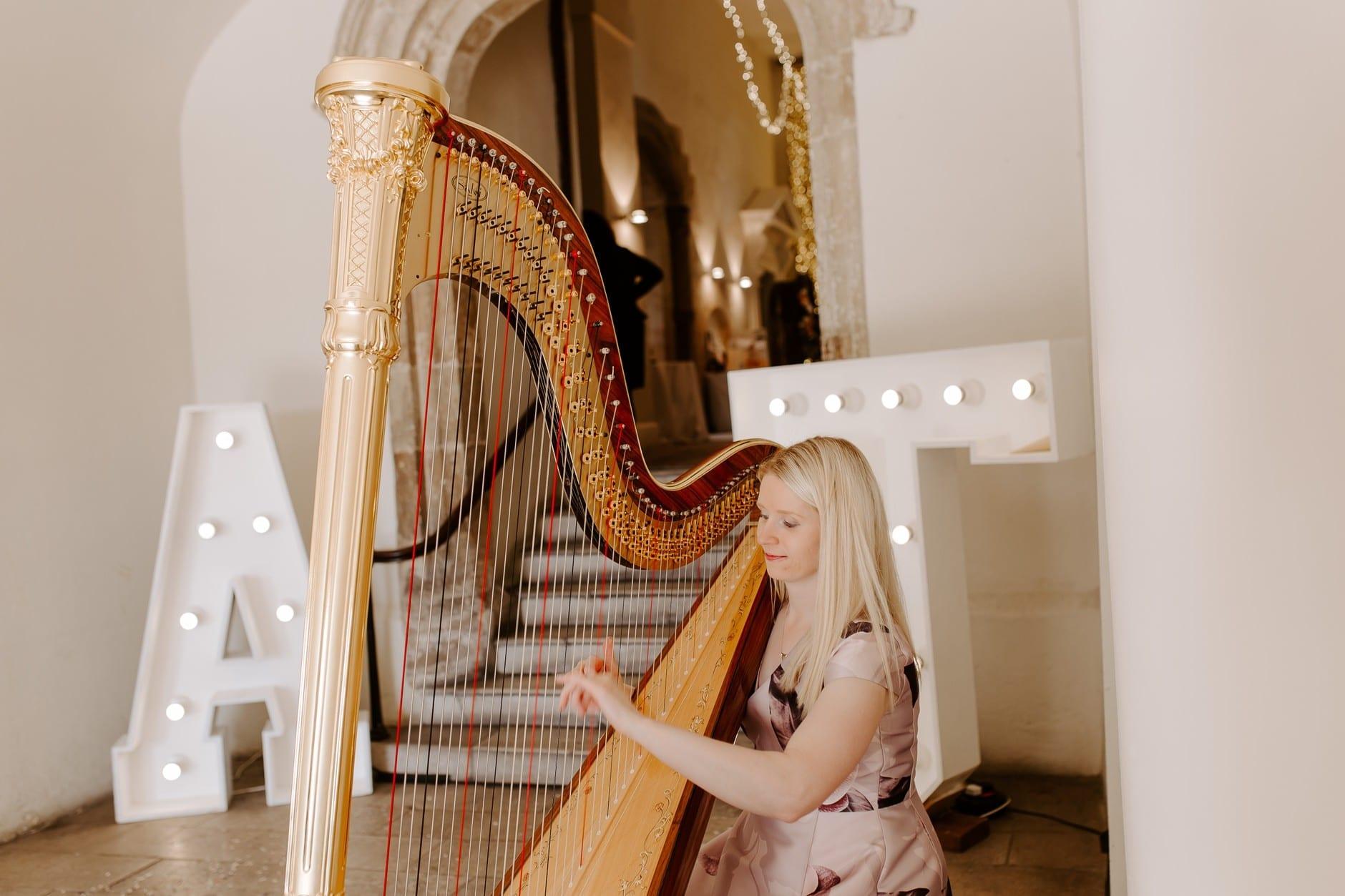Harpist playing at Farnham Castle