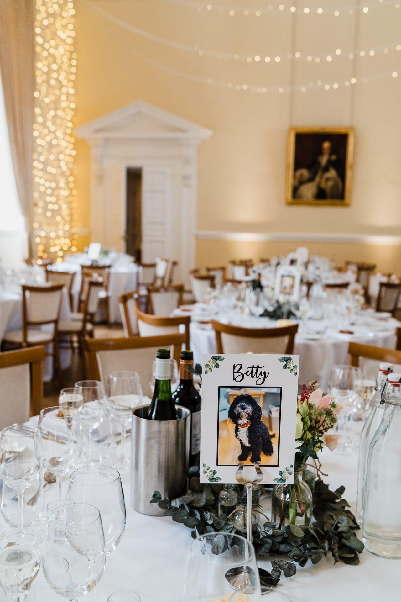 Dog themed wedding reception table name idea